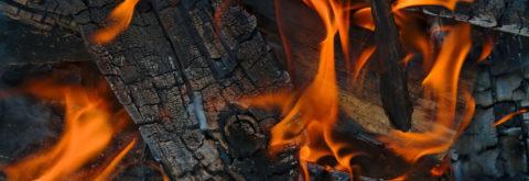 Palivové dřevo až k vám domů