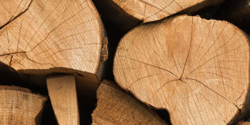 Buk - palivové dřevo